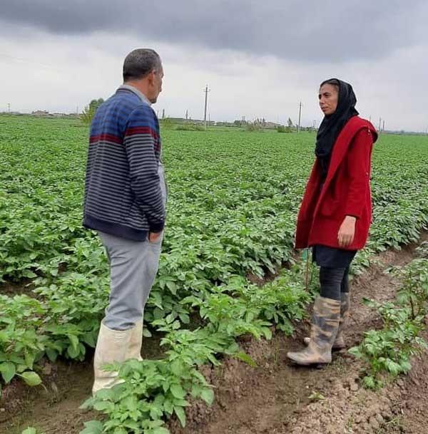 راه اندازی اولین سامانه ملی دیجیتال آموزش کشاورزی کشور