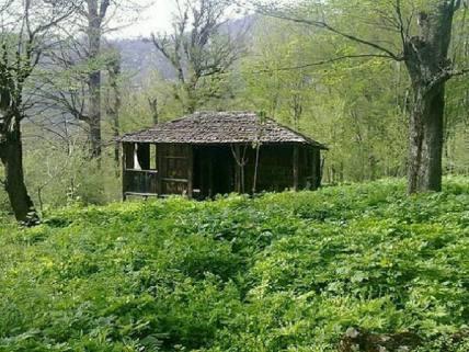 گلستان ما - سیاه رودبار بهشت گمشده و سرزمین سرخدار استان گلستان+ تصاویر