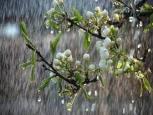 گلستان ما - روزهای پربارش پاییز و کاهش دما در گلستان